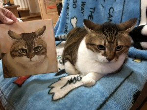 愛猫ちゃんの肖像画